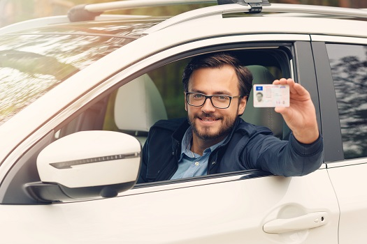 Driver's license facts